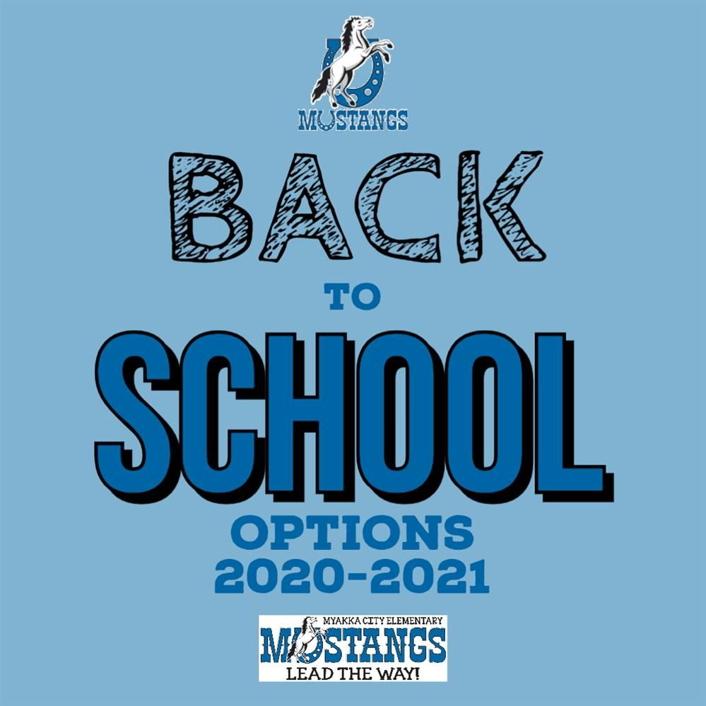 Return to School Options Explained